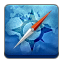 Browser, icon