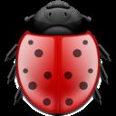bug, ladybird, insect, animal icon