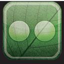 eco, flickr, green icon