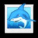 fgol shark icon
