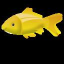 fish,animal icon