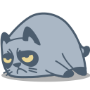 cat grumpy icon