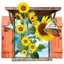 sunflowers, window, flowers icon