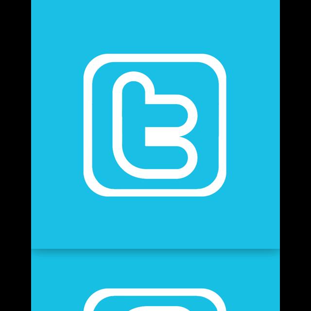 twitter, mirror, alt icon
