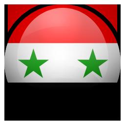 sy icon