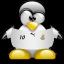 animal, penguin, ghana icon