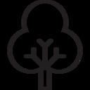 tree decidious icon
