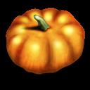 pumpkin, jack o lantern, halloween icon