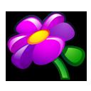scottish, kuickshow icon