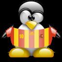 spain, animal, penguin icon