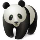 panda,animal,bear icon