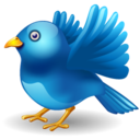 twitter bird landing icon