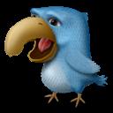 Angor, Bird icon