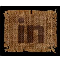 linked, in, linkedin icon