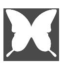 indesigncs2 icon