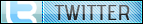 button, twitter icon