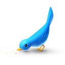 social, social network, animal, hungry, bird, twitter, sn icon