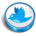 twitter bird sign icon