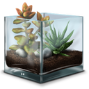 Succulent, Terrarium icon