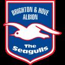 , &Amp, Albion, Brighton, Hove icon