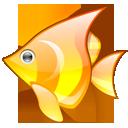 animal, fish, babelfish icon