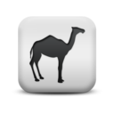 animal,camel icon