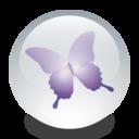 adobe,indesign icon