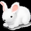 , Rabbit icon