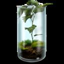 mossy,terrarium icon