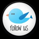 twitter button follow us icon