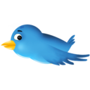 twitter,bird,animal icon