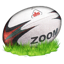 Ball, Rugby icon