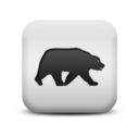 animal,bear icon