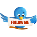 twitter,bird,animal icon