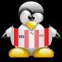 paraguay, animal, penguin icon