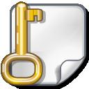 file, key, locked, encrypted icon
