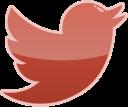 media, twitter, social, bird icon