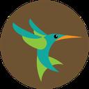 google, hummingbird, seo icon