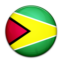Flag, Guyana, Of icon