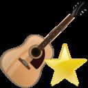 fav, guitar, instrument icon