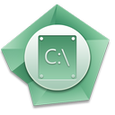 c icon