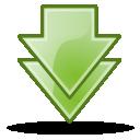 bottom icon