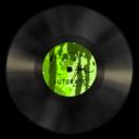 vinyl,green icon