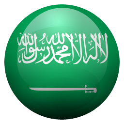 sa icon