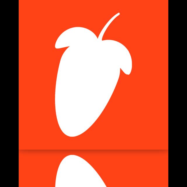 fl, mirror, studio icon