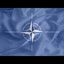Regular NATO icon