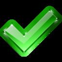 action,success,check icon