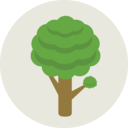 Ecology tree icon