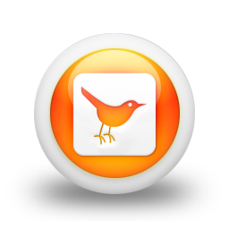 social network, square, twitter, social, sn, animal, bird icon
