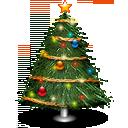 tree, plant icon